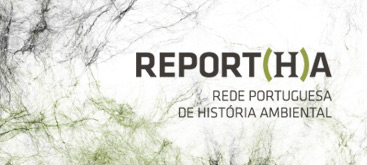 Sostenibilidad y degradación ecológica vistos a través de los «bosques reales